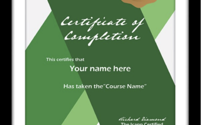 The Business Value of Certification & Training