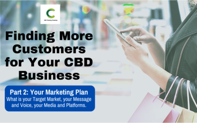 Finding More Customers for Your CBD Business Part 2: Marketing Plan