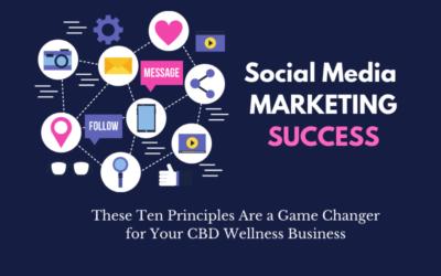 Social Media Marketing Success: Ten Success Principles